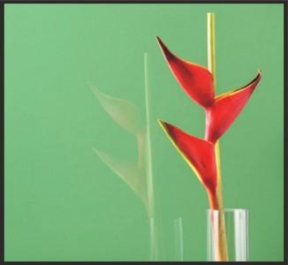 зеленое крашеное стекло