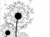 черно-белый векторный рисунок