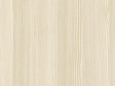 секвойя белая