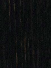 4384 ERRE